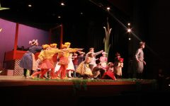 """Honk"" musical plays off classic ugly duckling fable"
