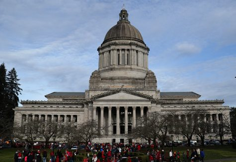 Students, teachers and parents flood the capitol steps for education funding