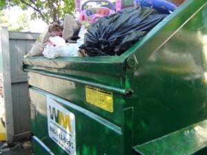 Waste Management strikes