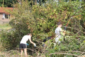 Volunteers came starting at 9 a.m. to help clean Terrace Ridge Park