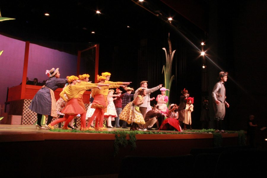Honk musical plays off classic ugly duckling fable