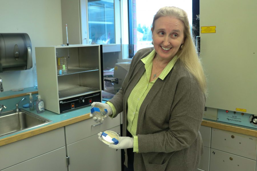 Science teacher Penny Lefavour shows off the work of her BioTech class.