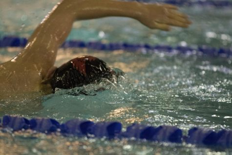 Men's Swim places third at district championship meet