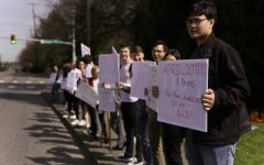 Students walk out in protest of school shootings