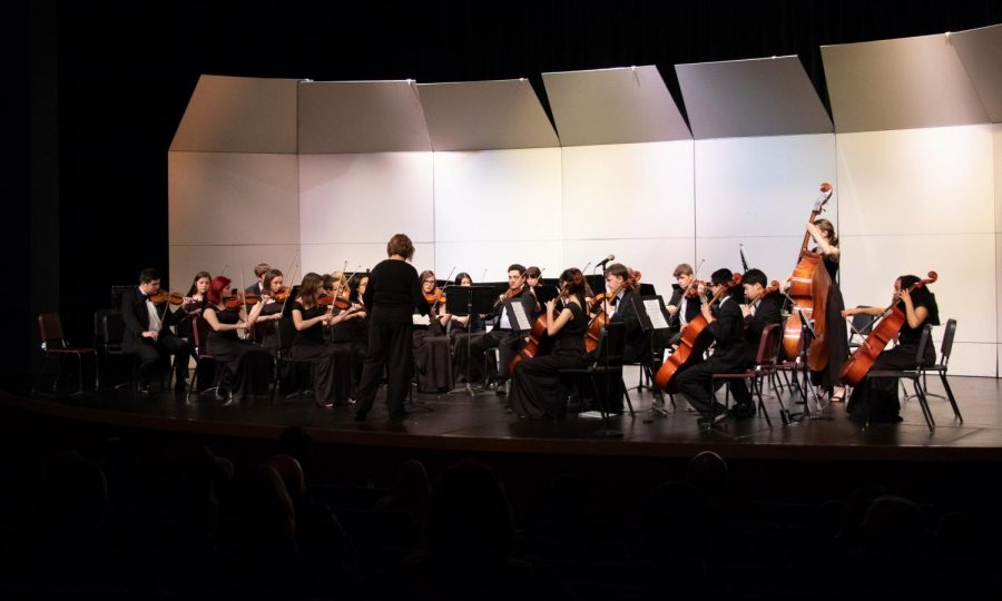 The Chamber Orchestra performs