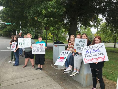 MTHS Students Participate In Global Climate Strike
