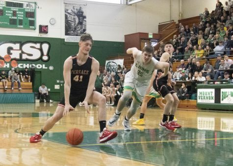 Hawks fall to Lions in state opener 59-54